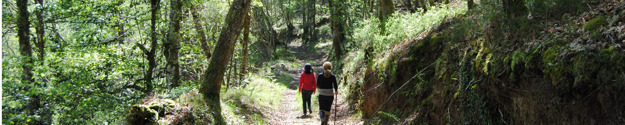 Sendas en casa rural Asturias