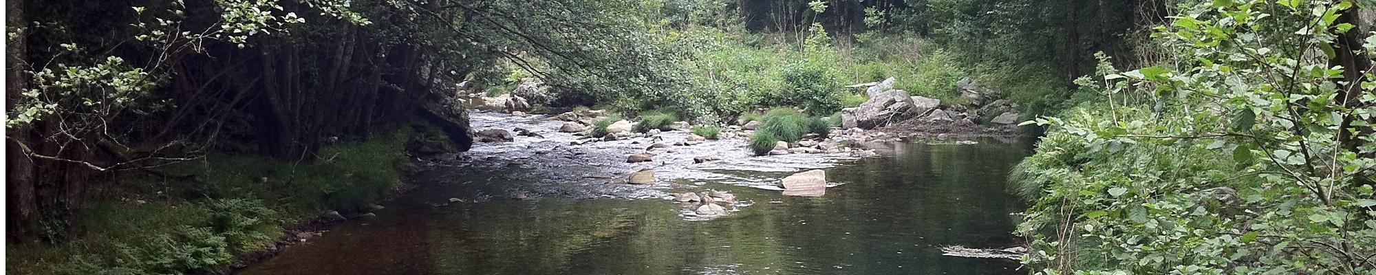 Hoces del río Esva Navelgas