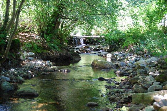 Río Yerbo - Tineo
